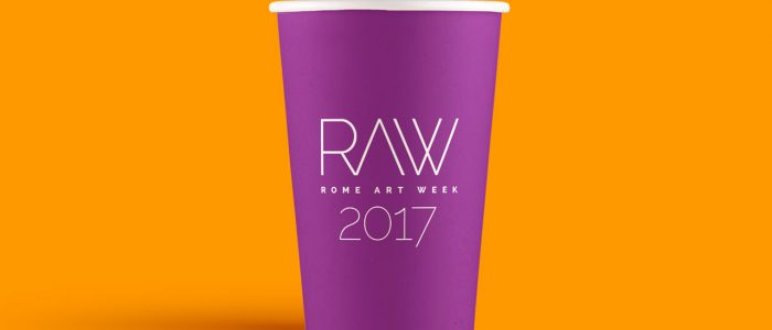 6)RAW-2017